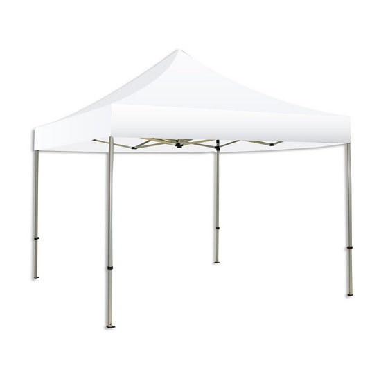 10u0027 Solid Color/Logo Trade Show Tent | Philadelphia u0026 California Trade Show Displays from AirborneVisuals  sc 1 st  Airborne Visuals & 10u0027 Solid Color/Logo Trade Show Tent | Philadelphia u0026 California ...