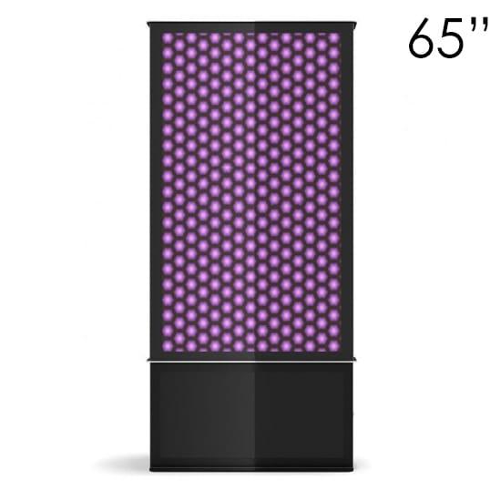 65″ Black Digital Poster Screen Tower
